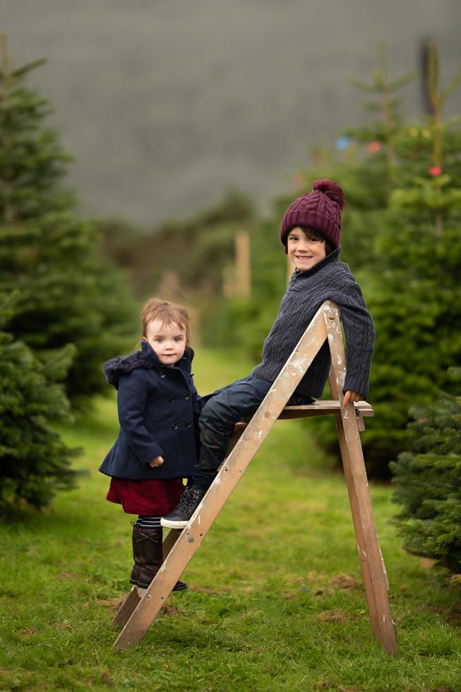 Family Photographer Dublin